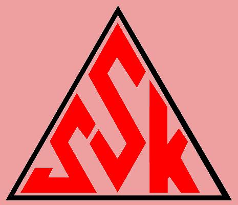 Photo of SSK 2022 SAYILI KANUN