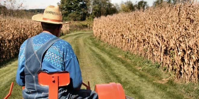 Çiftçi BağKuru Borç Sorgulama Nasıl Yapılır?