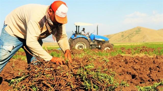 Photo of Çiftçi Bağ-Kur Primlerinin İadesi