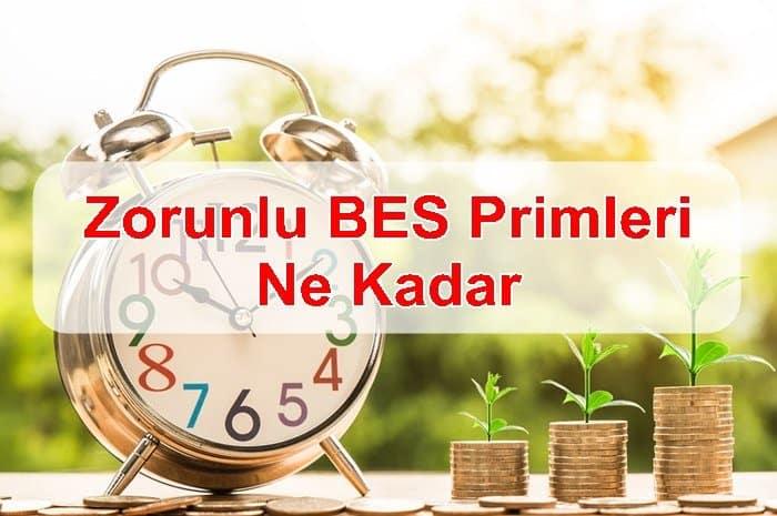 Photo of 2019 Zorunlu BES Primleri Ne Kadar