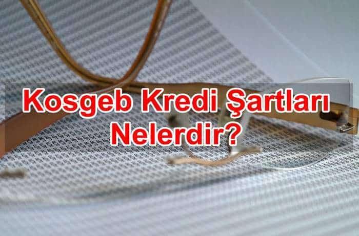 Photo of Kosgeb Kredi Şartları Nelerdir?