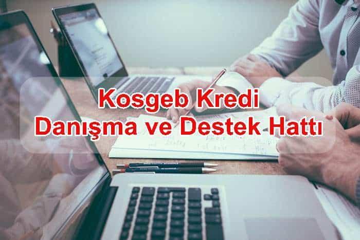 Photo of Kosgeb Kredi Danışma ve Destek Hattı