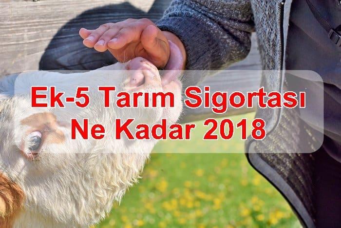 Photo of Ek-5 Tarım Sigortası Ne Kadar 2018