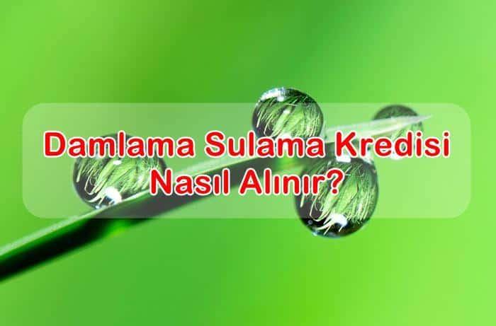 Photo of Damlama Sulama Kredisi Nasıl Alınır, Şartları Nelerdir?